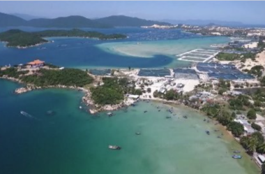 Vietnam's special administrative and economic zones, a close look